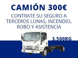 seguro camión 300€